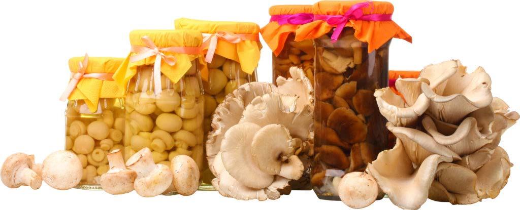 Что такое ботулизм и как не отравиться грибами