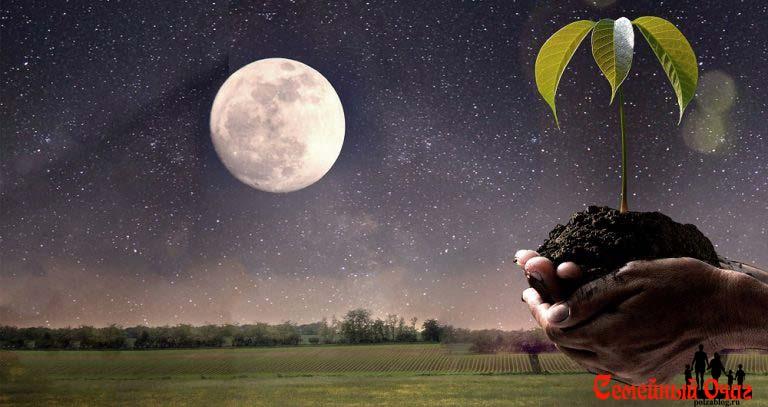 освещенность луны для растений