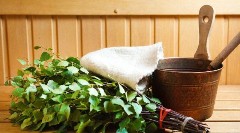 Заготовка веников для бани: сроки и как правильно заготавливать