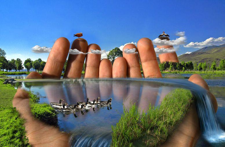 природа в наших руках