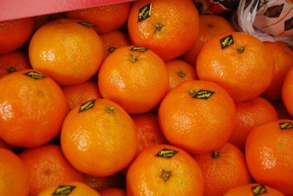 марокканские мандарины