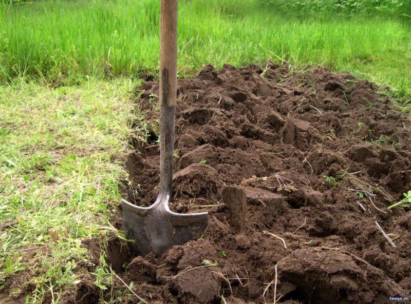 перекапываем огород