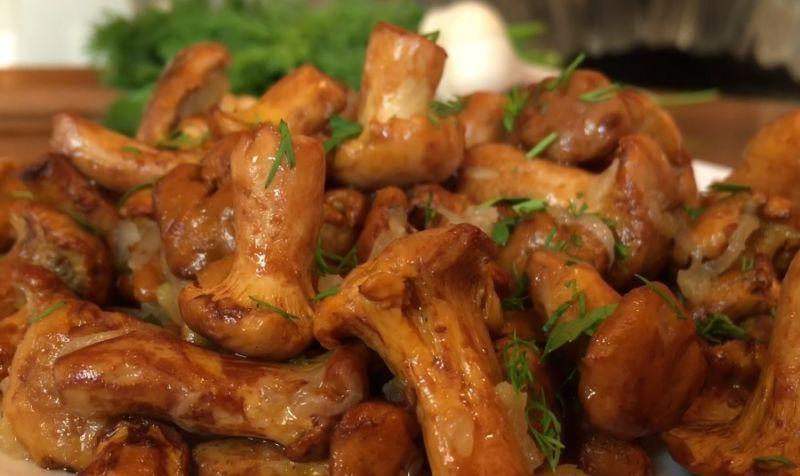 жаренные грибы лисички