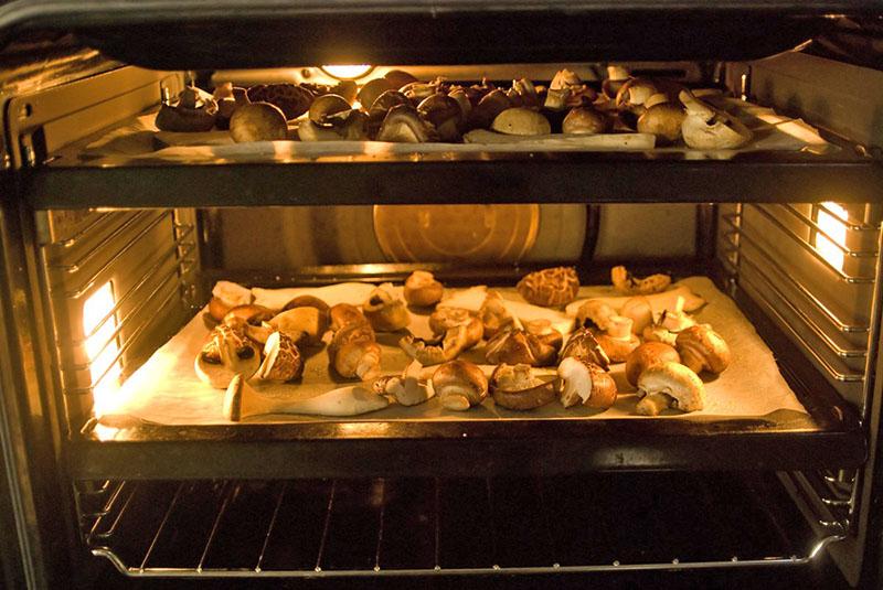 сушка грибов в духовке